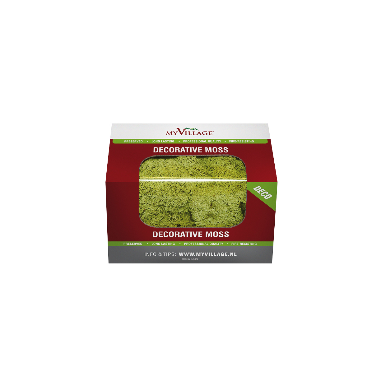 MYD29 - REINDEER-MOSS-LIGHT-GREEN